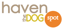 Haven the Dog Spot